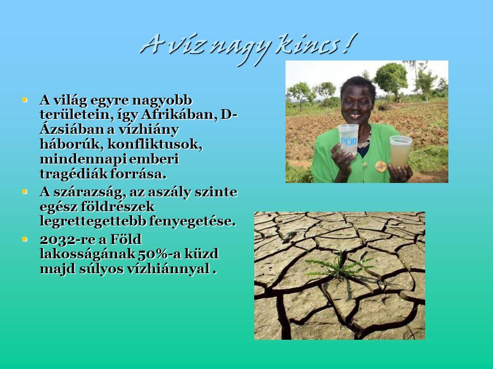 A víz nagy kincs !  A világ egyre nagyobb területein, így Afrikában, D- Ázsiában a vízhiány háborúk, konfliktusok, mindennapi emberi tragédiák forrás