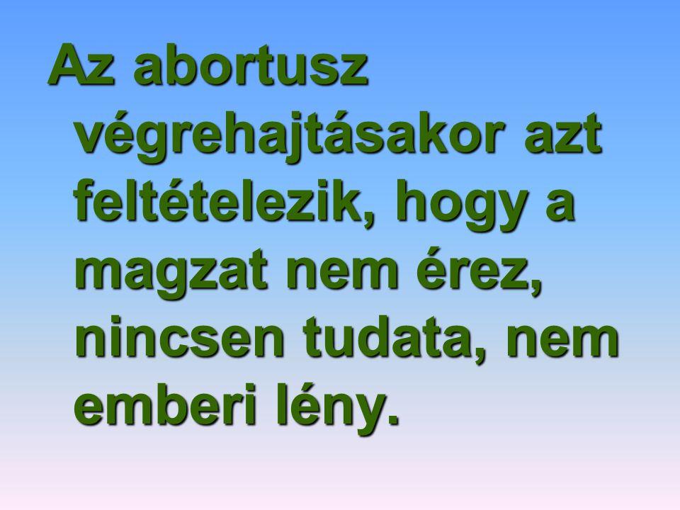 Az abortusz végrehajtásakor azt feltételezik, hogy a magzat nem érez, nincsen tudata, nem emberi lény.