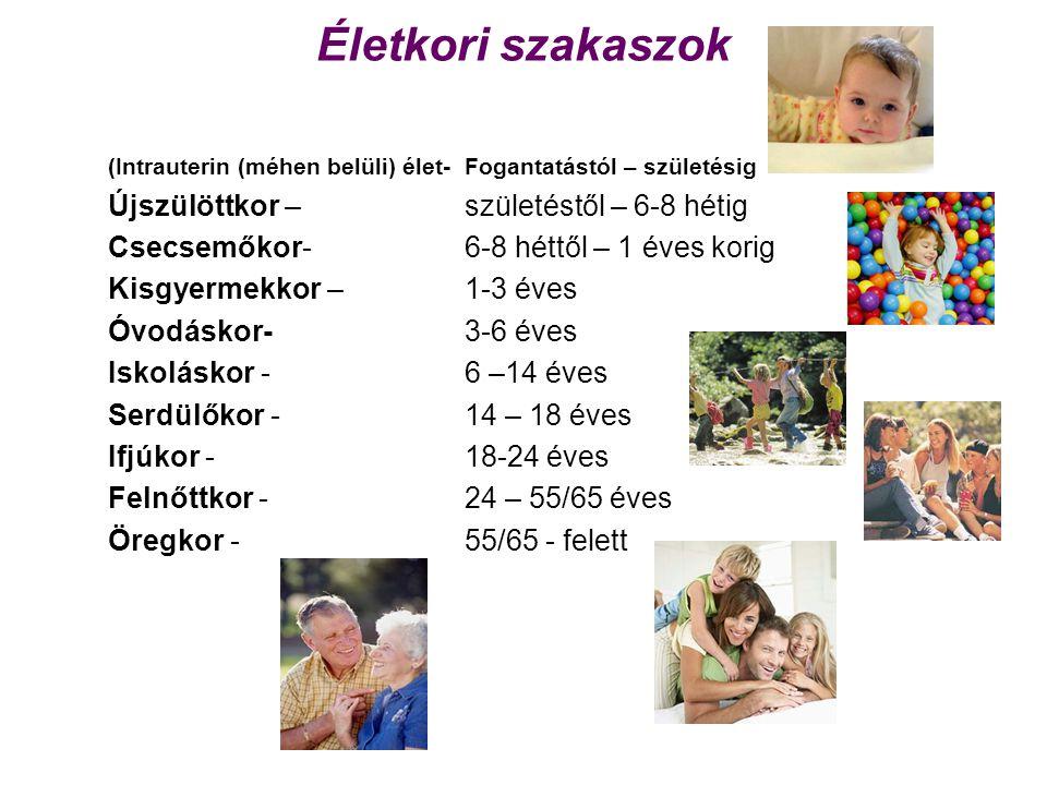 Életkori szakaszok (Intrauterin (méhen belüli) élet-Fogantatástól – születésig Újszülöttkor – születéstől – 6-8 hétig Csecsemőkor- 6-8 héttől – 1 éves