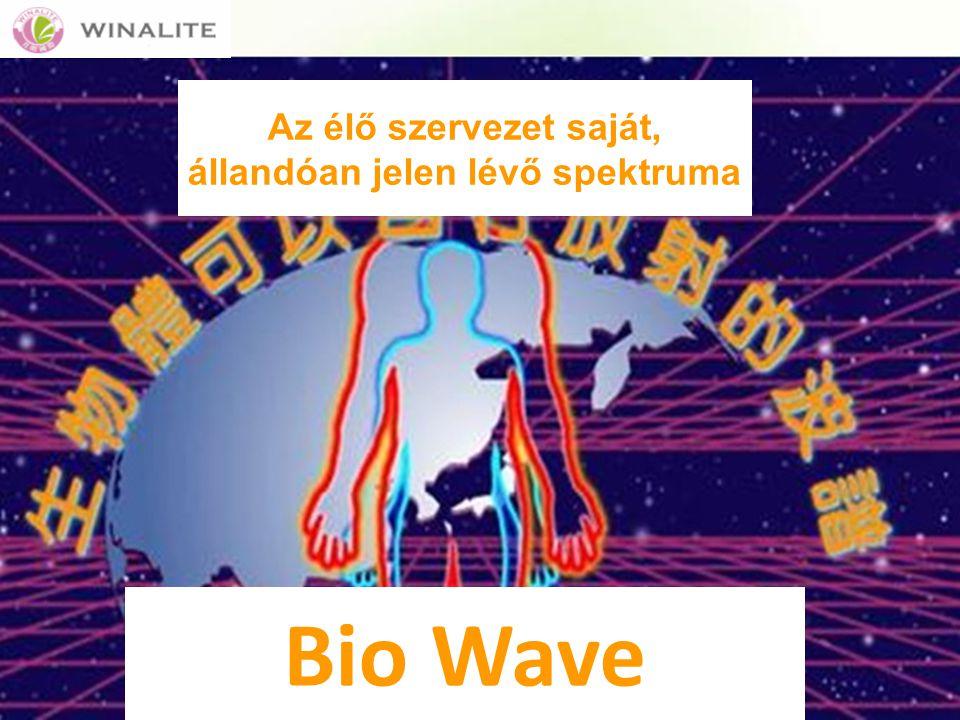 Az élő szervezet saját, állandóan jelen lévő spektruma Bio Wave