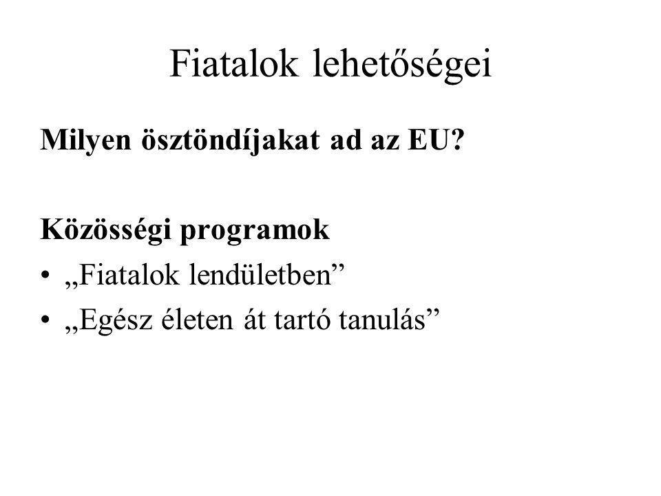 Fiatalok lehetőségei Milyen ösztöndíjakat ad az EU.