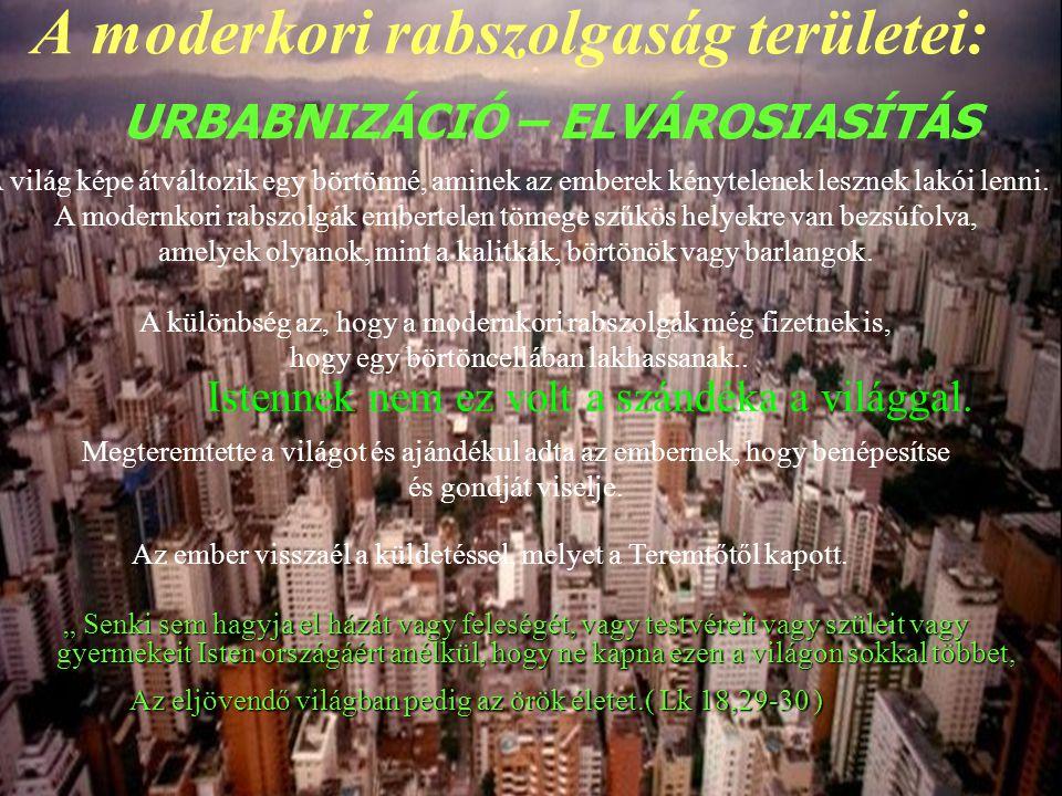 """A moderkori rabszolgaság területei: """" Senki sem hagyja el házát vagy feleségét, vagy testvéreit vagy szüleit vagy gyermekeit Isten országáért anélkül,"""