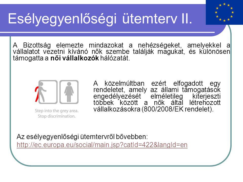 Esélyegyenlőségi ütemterv II.