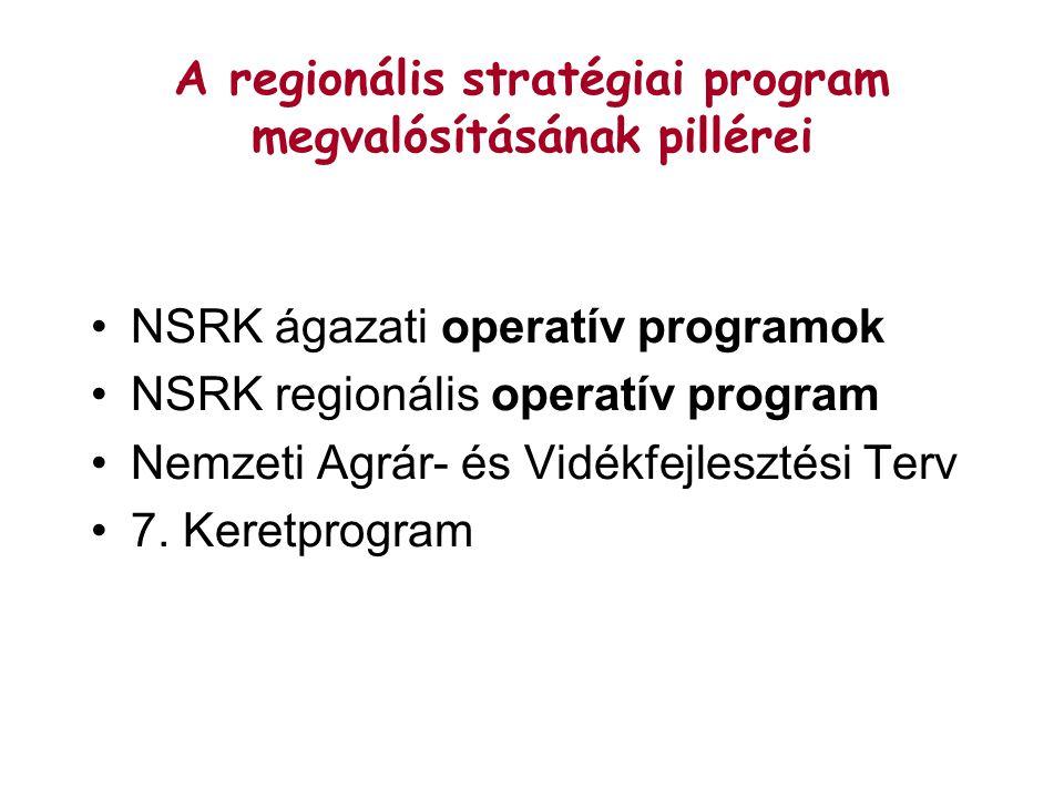 A regionális stratégiai program megvalósításának pillérei NSRK ágazati operatív programok NSRK regionális operatív program Nemzeti Agrár- és Vidékfejlesztési Terv 7.