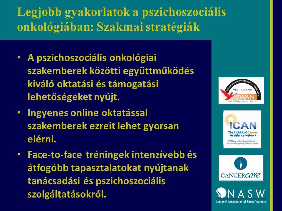 Legjobb gyakorlatok a pszichoszociális onkológiában: Szakmai stratégiák A pszichoszociális onkológiai szakemberek közötti együttműködés kiváló oktatás