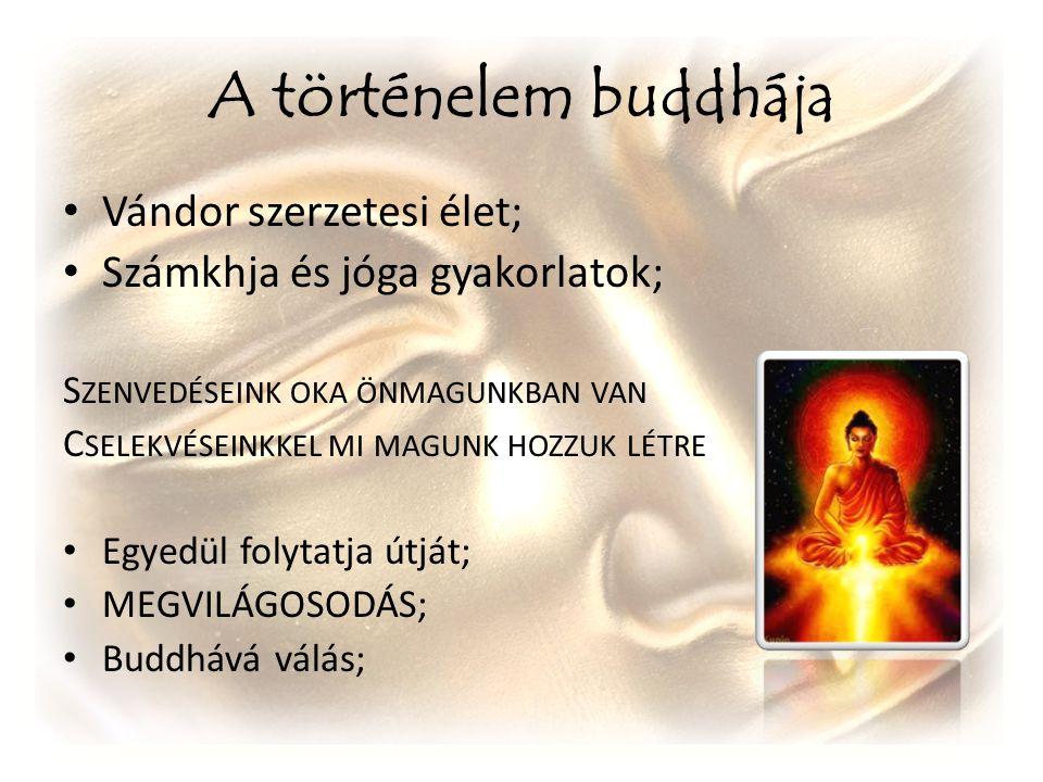 A történelem buddhája Vándor szerzetesi élet; Számkhja és jóga gyakorlatok; S ZENVEDÉSEINK OKA ÖNMAGUNKBAN VAN C SELEKVÉSEINKKEL MI MAGUNK HOZZUK LÉTR