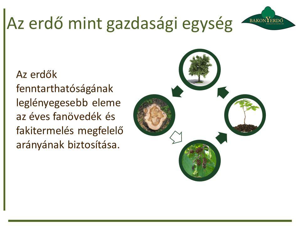 Az erdő mint gazdasági egység Az erdők fenntarthatóságának leglényegesebb eleme az éves fanövedék és fakitermelés megfelelő arányának biztosítása.