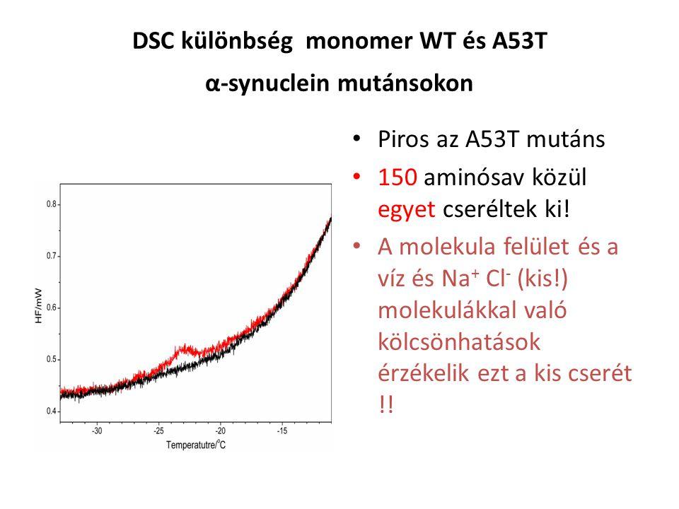DSC különbség monomer WT és A53T α-synuclein mutánsokon Piros az A53T mutáns 150 aminósav közül egyet cseréltek ki.