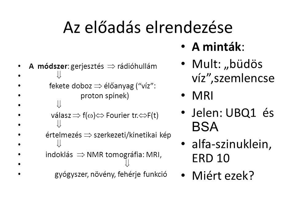 Az előadás elrendezése A módszer: gerjesztés  rádióhullám  fekete doboz  élőanyag ( víz : proton spinek)  válasz  f(  )  Fourier tr.