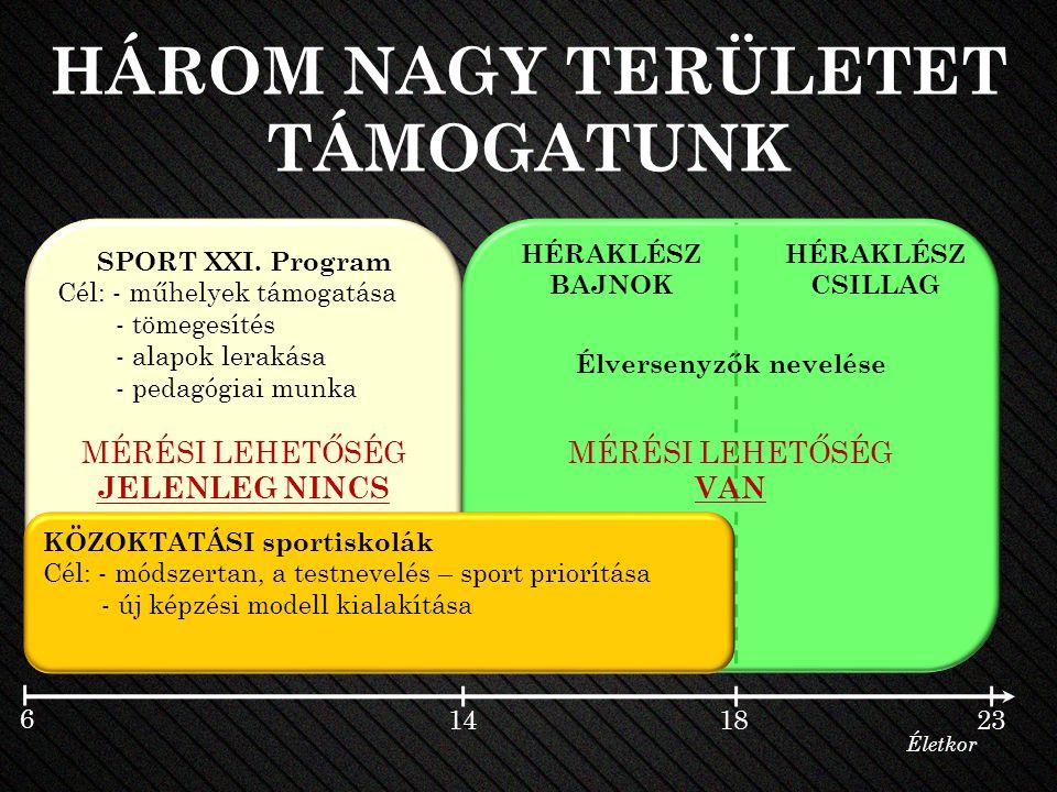 HÁROM NAGY TERÜLETET TÁMOGATUNK SPORT XXI.
