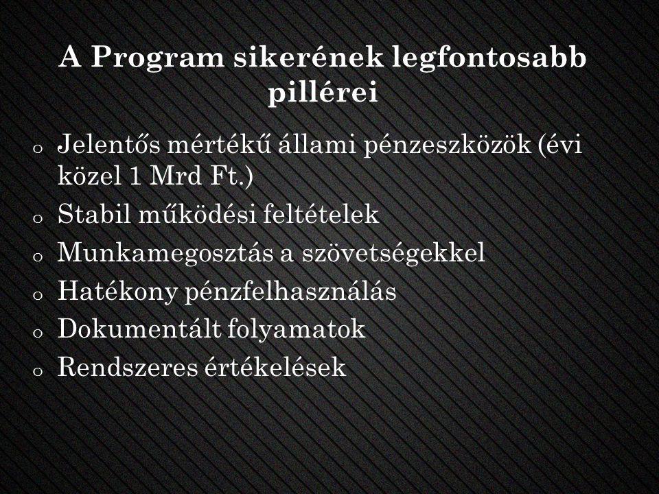 A Program sikerének legfontosabb pillérei o Jelentős mértékű állami pénzeszközök (évi közel 1 Mrd Ft.) o Stabil működési feltételek o Munkamegosztás a