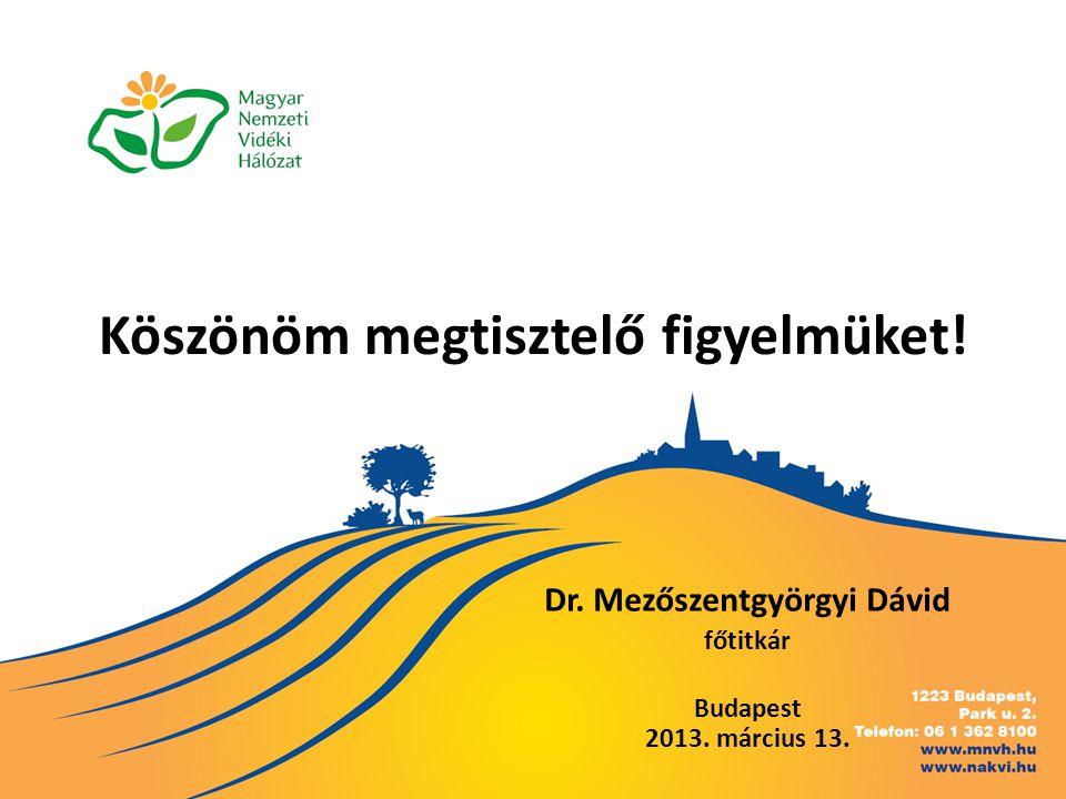 Köszönöm megtisztelő figyelmüket! Dr. Mezőszentgyörgyi Dávid főtitkár Budapest 2013. március 13.