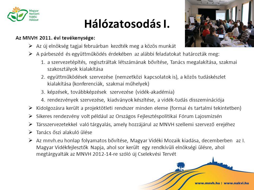 Hálózatosodás II.Az MNVH 2012.