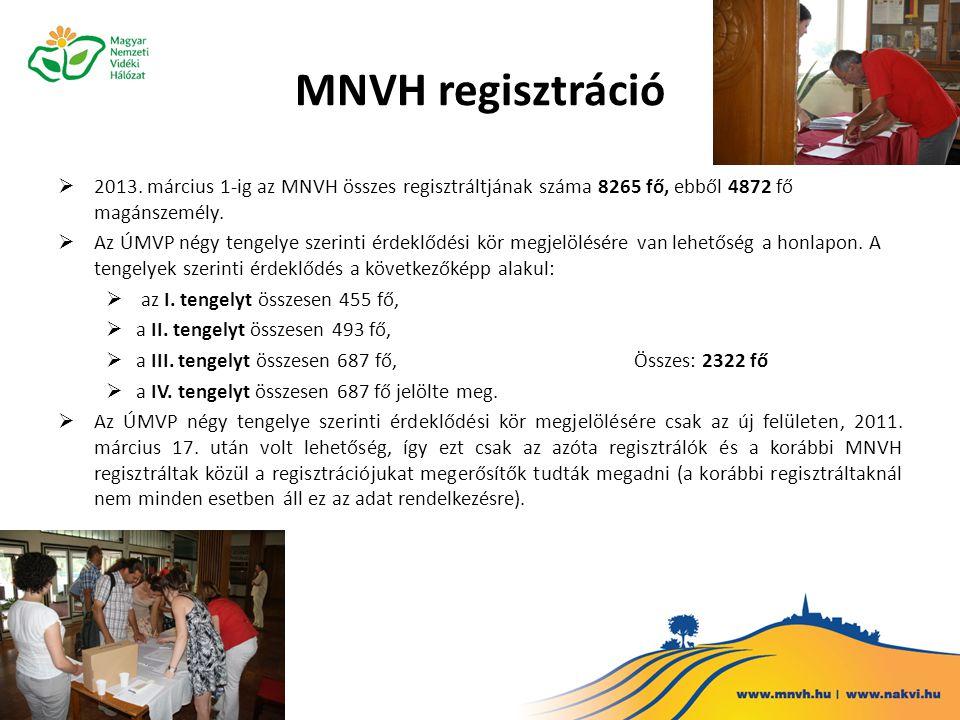 Hálózat tevékenységei  A formálódó új magyar nemzeti vidékstratégia feladataihoz kapcsolódó szakmai eszmecserék, képzések, lokális tervezései és fejlesztési viták lebonyolítása  Regisztráció és az előzetes nyilvántartásba vétel folyamatos gondozása  Vidékfejlesztési projektötletek tárházának létrehozása, a támogatási kiírások folyamatos figyelemmel kísérése és korszerűsítése  Vidéki rendezvényeken az MNVH céljainak képviselete, szakmai konferenciák szervezése  A Falu című folyóirat, a Magyar Vidéki Mozaik rendszeres megjelentetése  Segítségnyújtás a térségközi és nemzetek közötti kooperációhoz  Tanulmányutak, képzések szervezése  A többszereplős fejlesztéseket, települési és szakmai együttműködési hálózatok kialakításának elősegítése  Tájékoztatás nyújtása a vidéki szervezetek és szereplők számára a hazai és nemzetközi vidékfejlesztési források által nyújtott lehetőségekről  Az Európai Vidékfejlesztési Hálózattal (a továbbiakban: EVH) való együttműködés biztosítása  MTA-MNVH vidékfejlesztési kutatások Az MNVH jelenlegi tevékenységét a 2012-2013 évi Cselekvési Terv szerint végzi, a forrást az ÚMVP TS keretéből az IH biztosítja