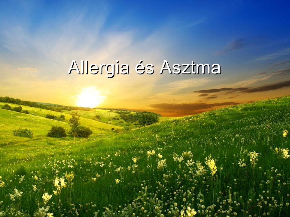 Ma a mellékvesekéreg-hormon-tartalmú készítmények az asztma leghatásosabb gyógyszerei.
