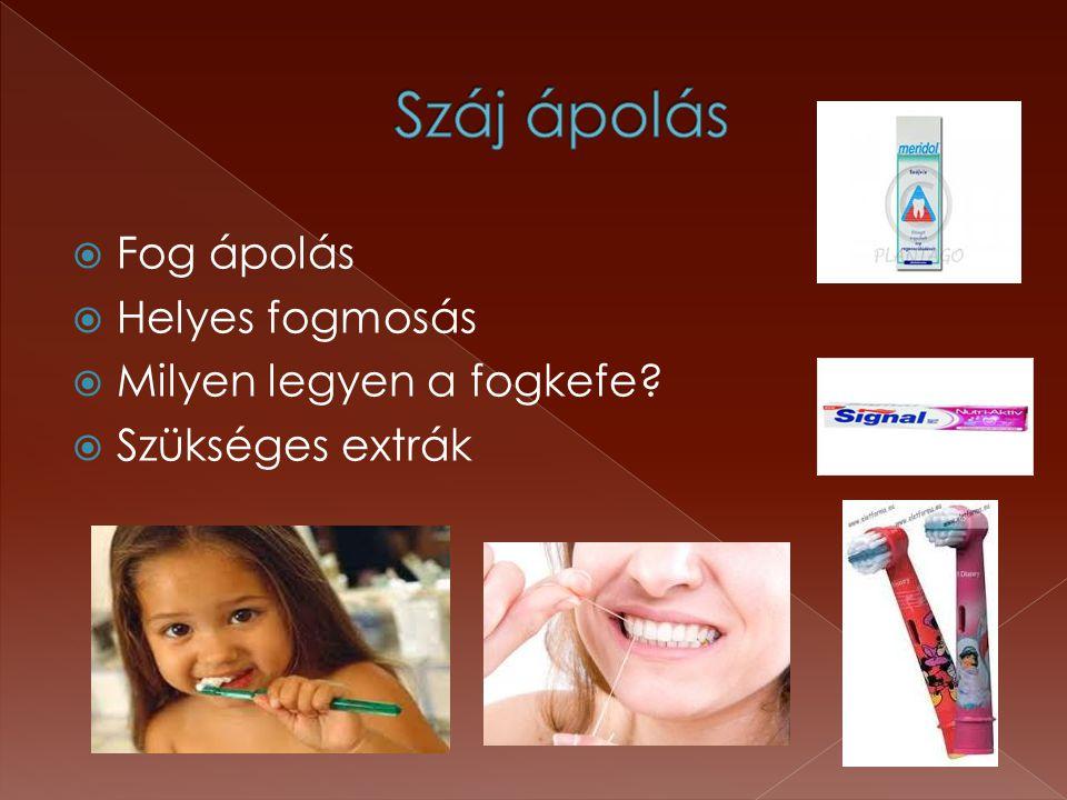  Fog ápolás  Helyes fogmosás  Milyen legyen a fogkefe?  Szükséges extrák