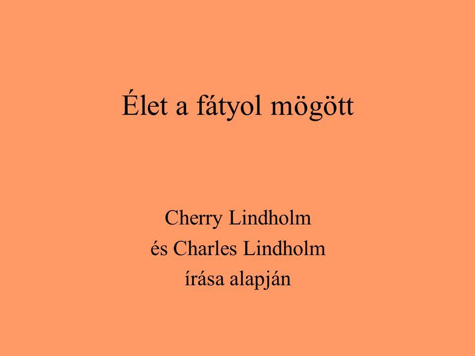 Élet a fátyol mögött Cherry Lindholm és Charles Lindholm írása alapján