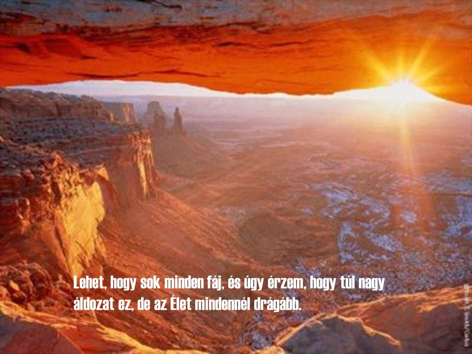 Ebben a nagyböjtben álljak az Isten elé, úgy ahogy vagyok, szépítgetés nélkül avval a szilárd hittel, hogy Ő aki tud segíteni, és aki akar segíteni.