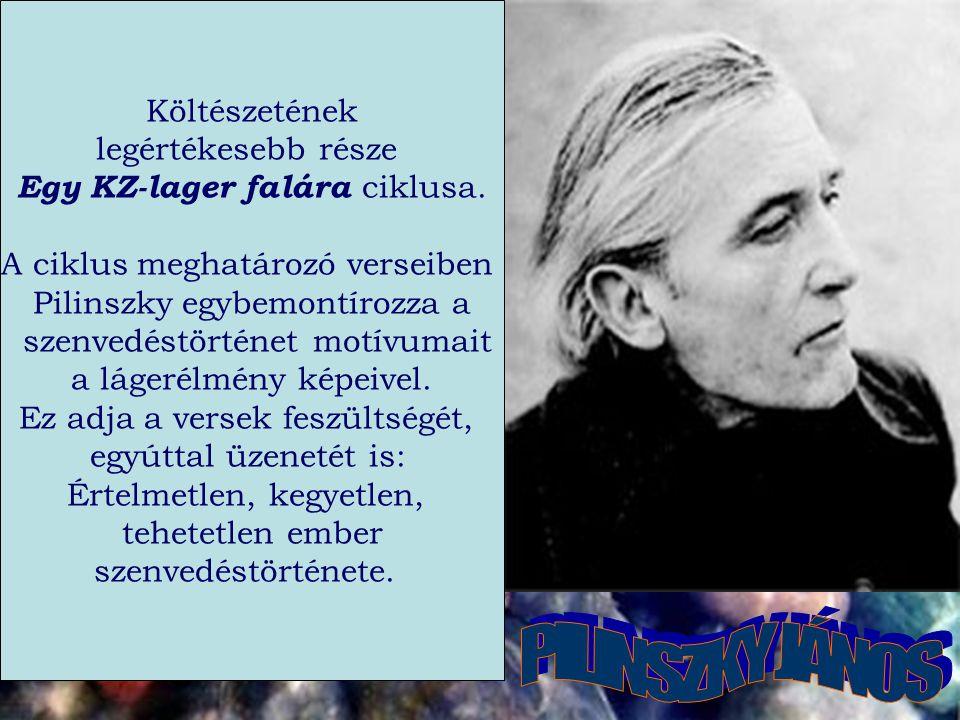 Költészetének legértékesebb része Egy KZ-lager falára ciklusa.