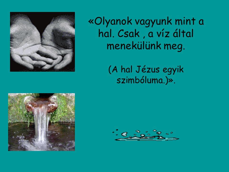 «Olyanok vagyunk mint a hal. Csak, a víz által menekülünk meg. (A hal Jézus egyik szimbóluma.)».
