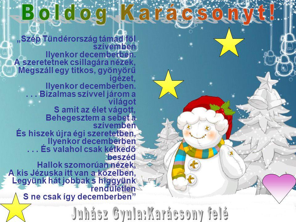 """""""Szép Tündérország támad föl szívemben Ilyenkor decemberben. A szeretetnek csillagára nézek, Megszáll egy titkos, gyönyörű igézet, Ilyenkor decemberbe"""