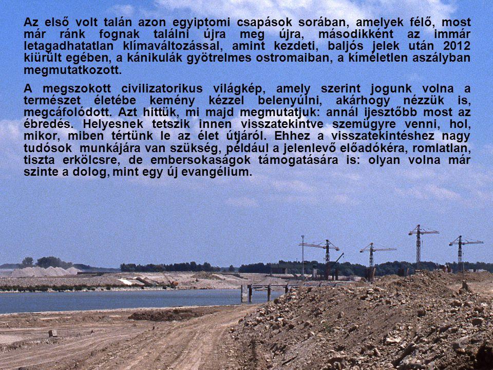 Tulajdonképpen örülhetünk, hogy a Duna-mozgalom annyit is elért, amennyit elért, kivételes jelenség a modern országok történetében.