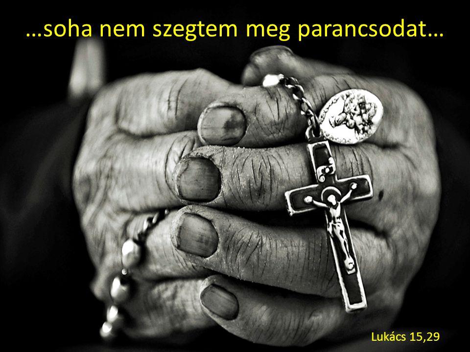 …soha nem szegtem meg parancsodat… Lukács 15,29