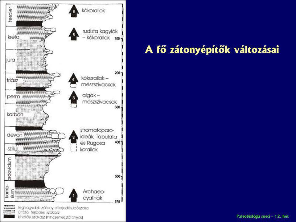 Paleobiológia speci – 12. hét A fő zátonyépítők változásai