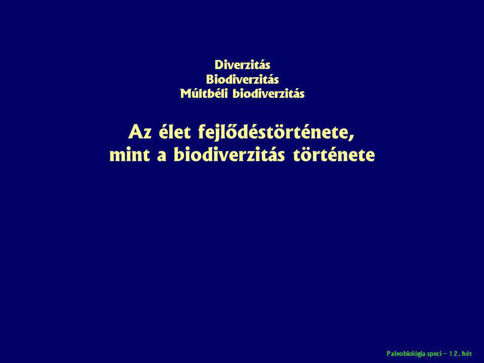 Paleobiológia speci – 12. hét Diverzitás Biodiverzitás Múltbéli biodiverzitás Az élet fejlődéstörténete, mint a biodiverzitás története