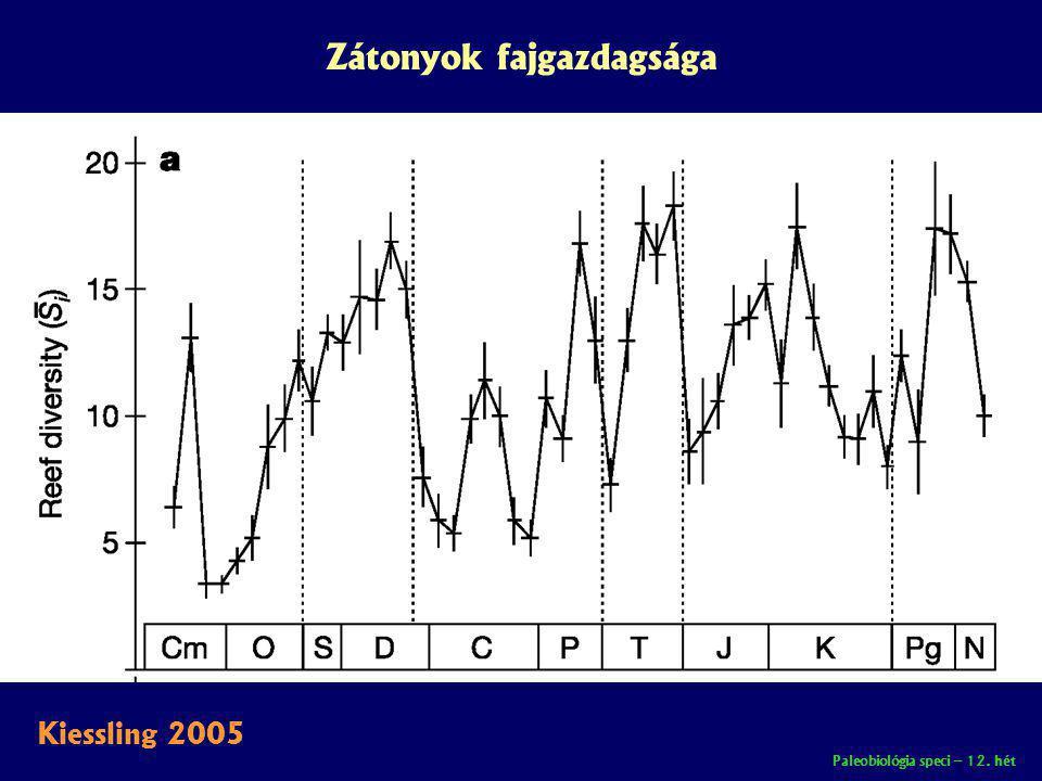 Paleobiológia speci – 12. hét Zátonyok fajgazdagsága Kiessling 2005