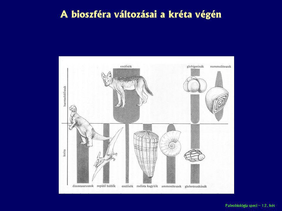 Paleobiológia speci – 12. hét A bioszféra változásai a kréta végén