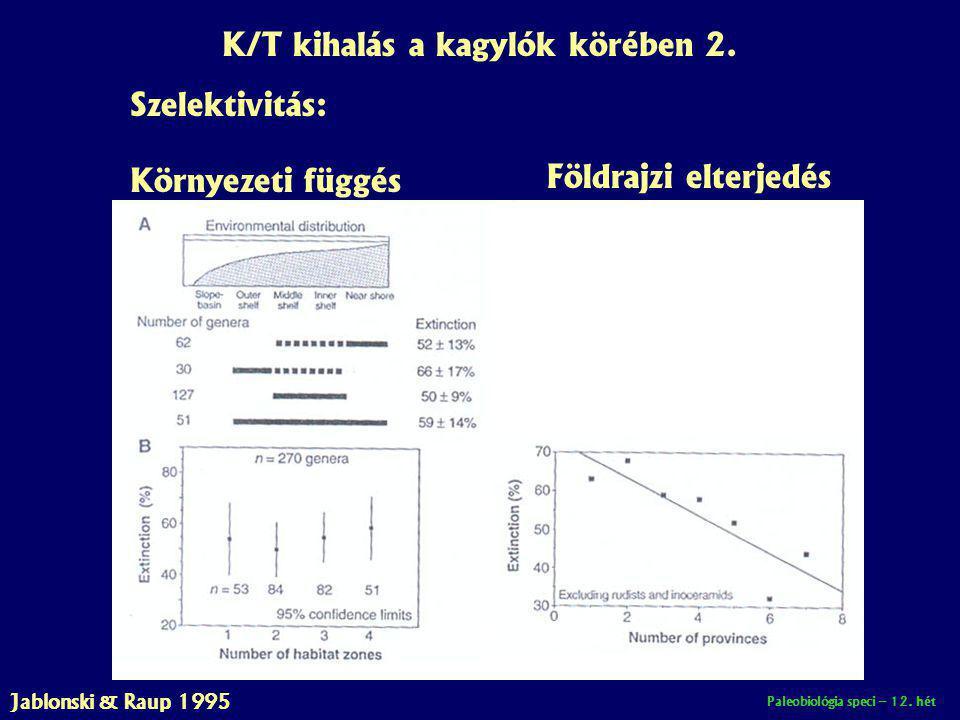 Paleobiológia speci – 12. hét K/T kihalás a kagylók körében 2. Szelektivitás: Környezeti függés Földrajzi elterjedés Jablonski & Raup 1995