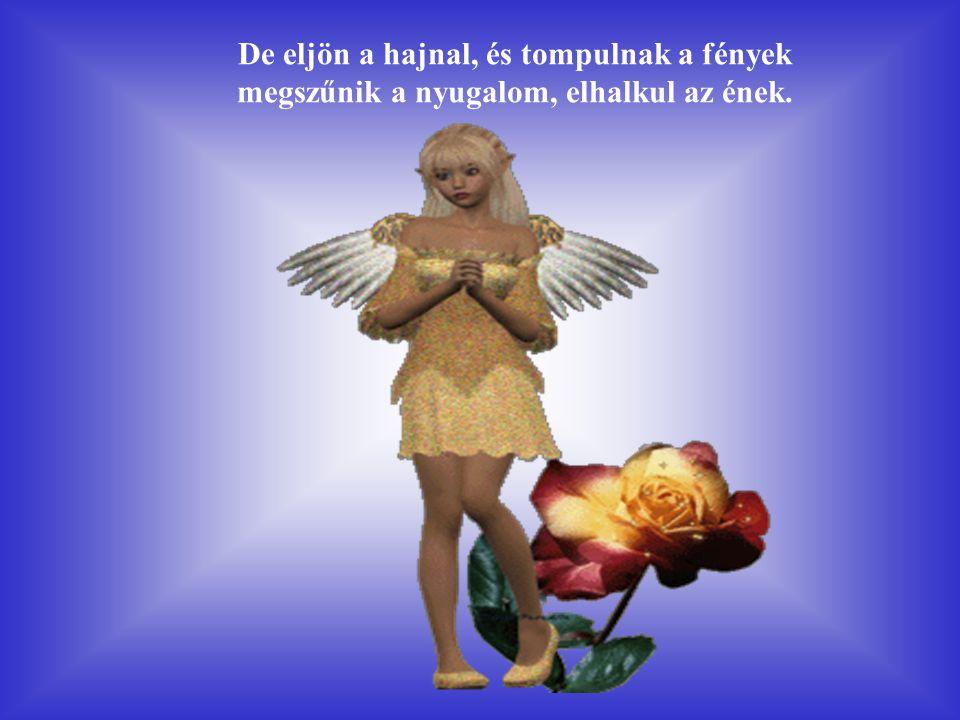 A mennyországban járok, hol az angyalok élnek ahol végtelen a nyugalom, és csodaszép az ének.