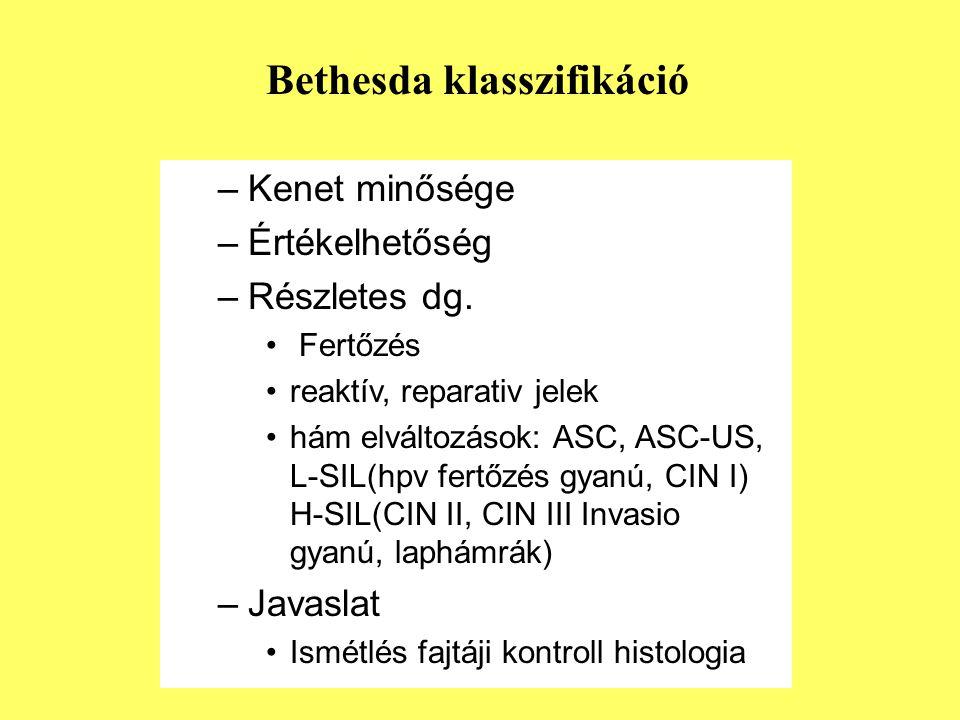 –Kenet minősége –Értékelhetőség –Részletes dg. Fertőzés reaktív, reparativ jelek hám elváltozások: ASC, ASC-US, L-SIL(hpv fertőzés gyanú, CIN I) H-SIL