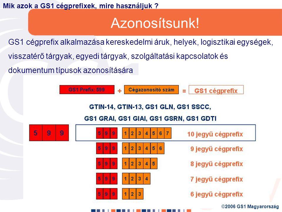 GS1 azonosító kulcsok 6.GS1 GLOBÁLIS SZOLGÁLTATÁSI KAPCSOLAT SZÁM (GS1 GSRN) 5.