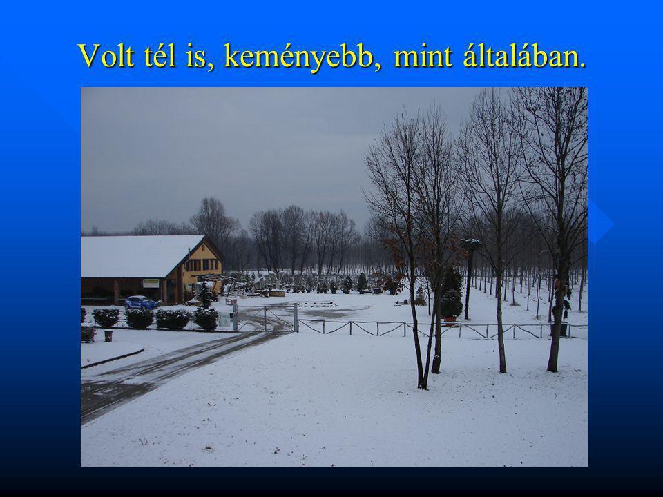 Volt tél is, keményebb, mint általában.
