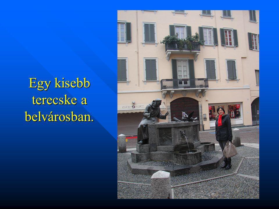 Vigevano a Ticino folyó partján épült.