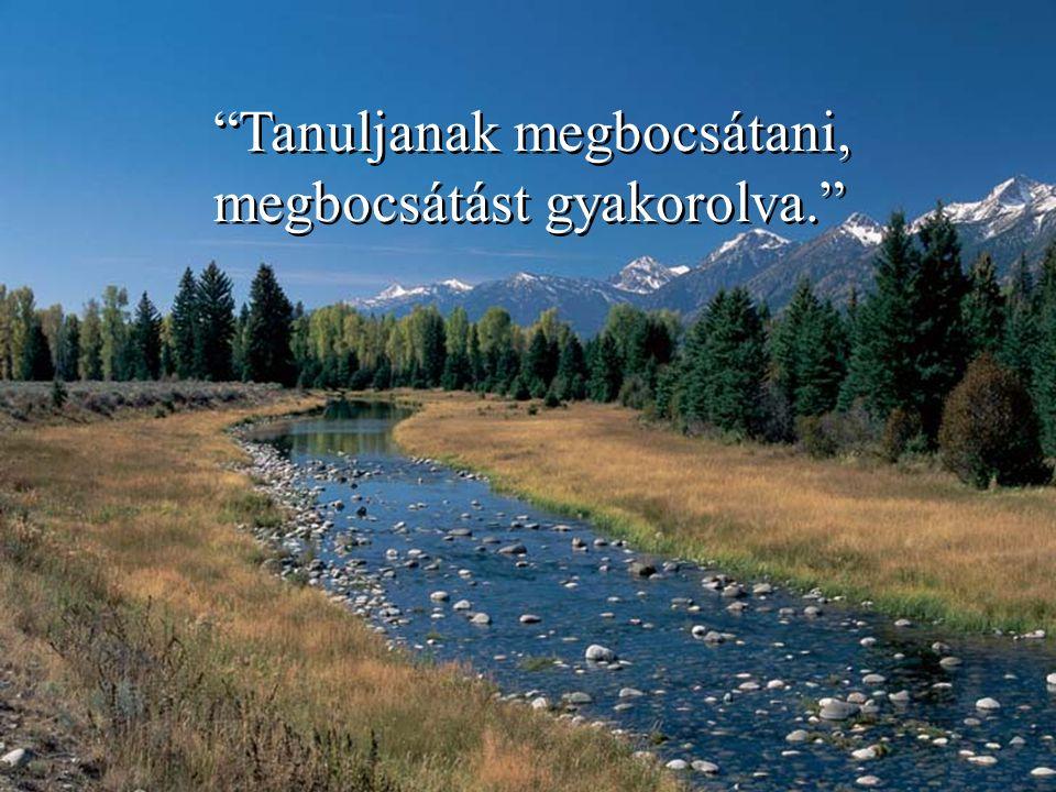 Tanuljanak megbocsátani, megbocsátást gyakorolva. Tanuljanak megbocsátani, megbocsátást gyakorolva.