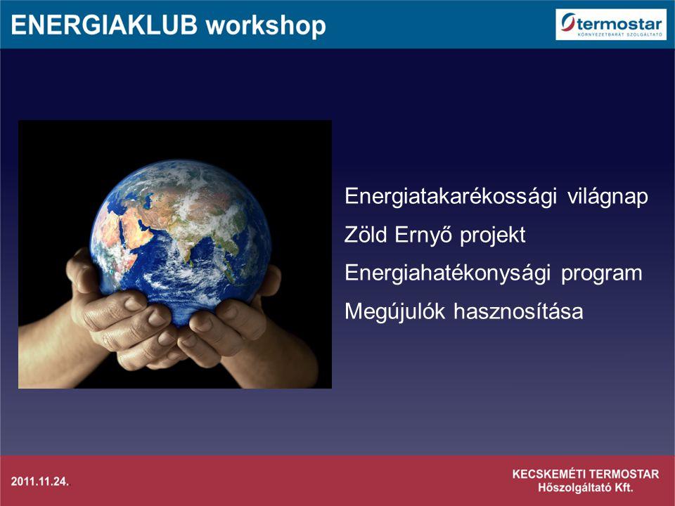 Energiatakarékossági világnap Zöld Ernyő projekt Energiahatékonysági program Megújulók hasznosítása