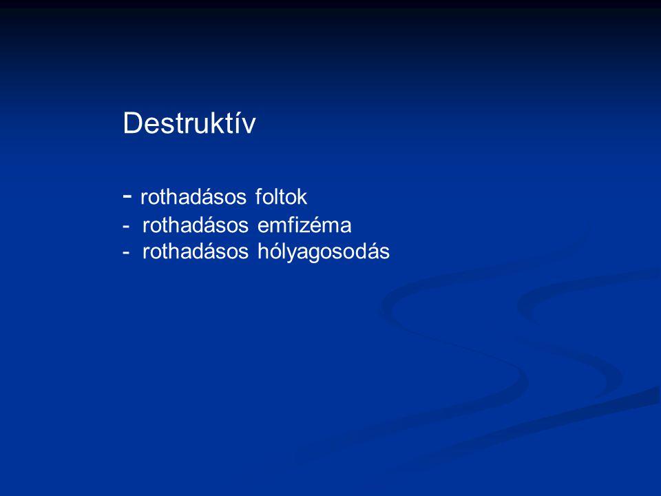 Destruktív - rothadásos foltok - rothadásos emfizéma - rothadásos hólyagosodás
