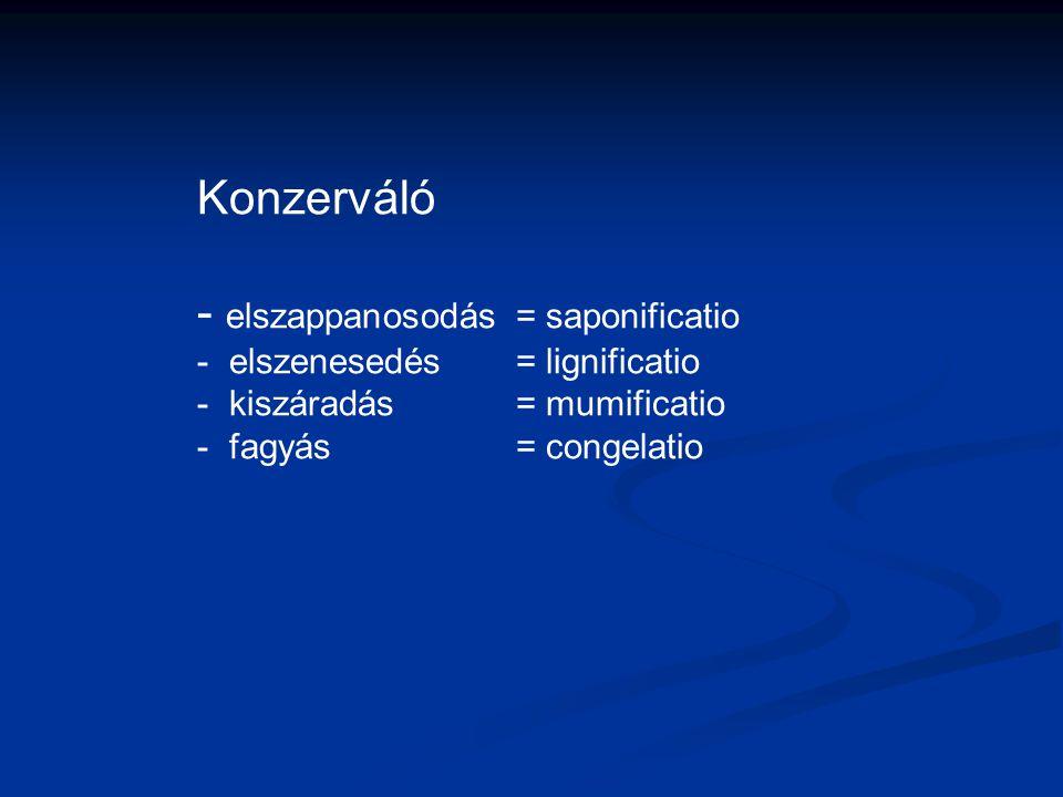Konzerváló - elszappanosodás = saponificatio - elszenesedés= lignificatio - kiszáradás= mumificatio - fagyás= congelatio