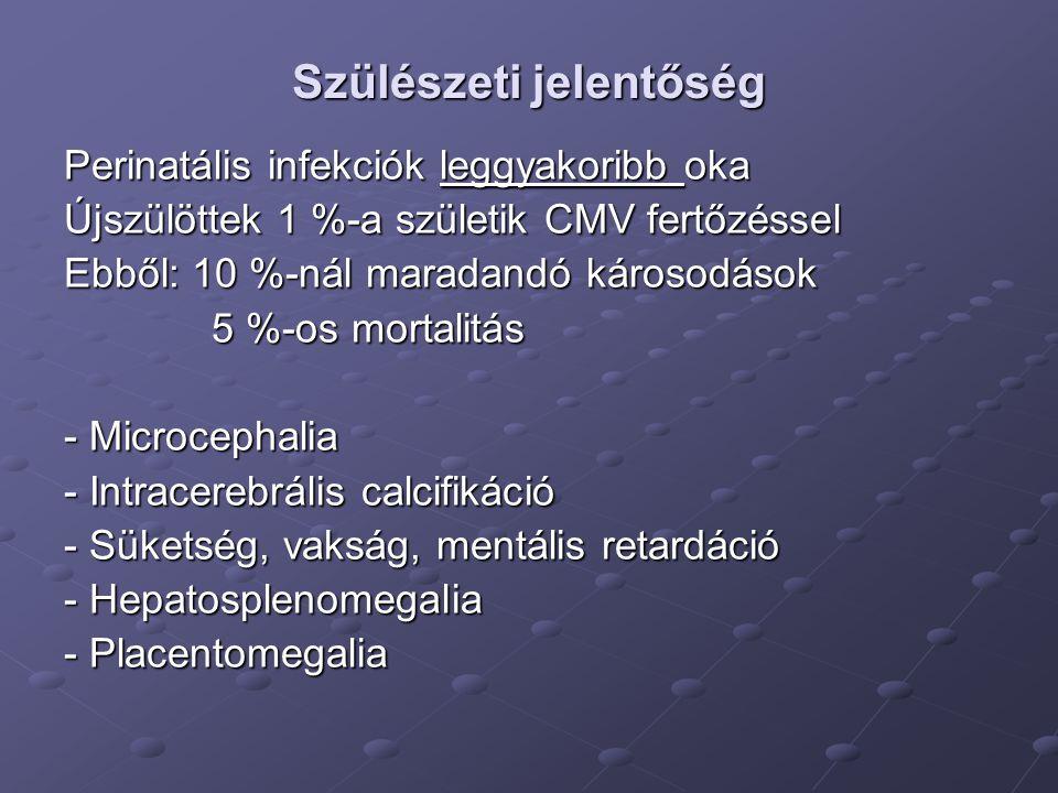 Cytomegalovírus-fertőzés Placentomegalia