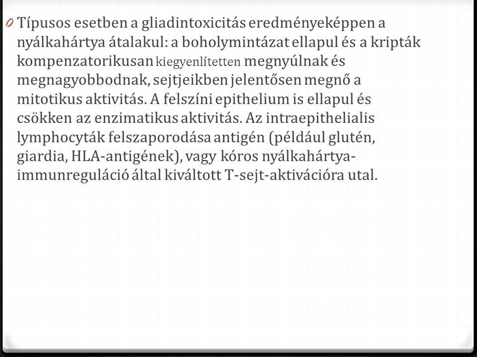 0 Típusos esetben a gliadintoxicitás eredményeképpen a nyálkahártya átalakul: a boholymintázat ellapul és a kripták kompenzatorikusan kiegyenlítetten