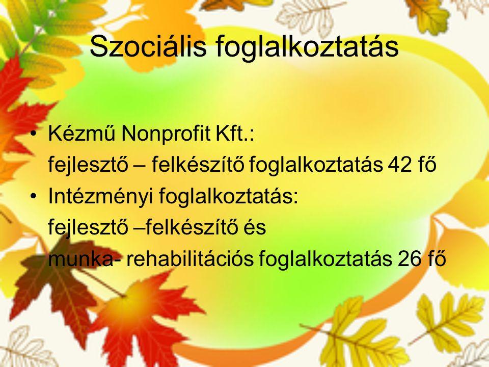 Szociális foglalkoztatás Kézmű Nonprofit Kft.: fejlesztő – felkészítő foglalkoztatás 42 fő Intézményi foglalkoztatás: fejlesztő –felkészítő és munka-