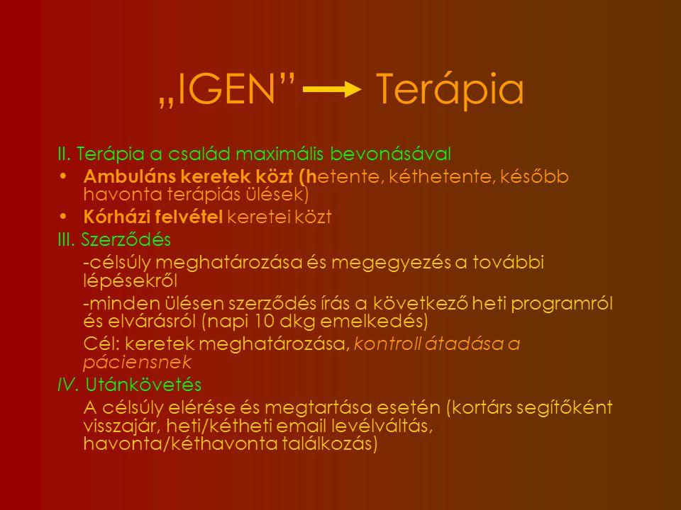 Családterápia - 2 terapeutával történik Családot a változás irányába tereli Családterápia, családi konzultáció Gyermekkel és szülőkkel együtt dönteni a célsúlyról és elérésének fázisairól A gyermek saját felelősségének hangsúlyozása (autonómia segítése) A szülő (és gyermek) megszabadítása a feszültségkeltő szülői kontrolltól (ételről való beszélgetés nem megengedett) Csak a súlymérés marad kontrollként a szülő kézében (naponta, diagram) Nyílt kommunikáció a terápián (modellt adni) Az egyedüli terápiás rezsim kiválasztása (kiskapuzás elkerülése) Összemosottság tettenérése……..