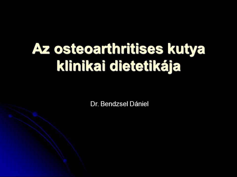 Osteoarthritis (OA) Polifaktoriális oktanú betegség (genetika – testsúly) Polifaktoriális oktanú betegség (genetika – testsúly) Ízületi porc regresszív elváltozása (reparatio nem bír lépést tartani) Ízületi porc regresszív elváltozása (reparatio nem bír lépést tartani) Másodlagos kórképek (synovitis, csontelváltozások, stb.) Másodlagos kórképek (synovitis, csontelváltozások, stb.) Nehezen, vagy egyáltalán nem visszafordítható folyamat Nehezen, vagy egyáltalán nem visszafordítható folyamat Predilekciós helyek: csípő, könyök, térd Predilekciós helyek: csípő, könyök, térd