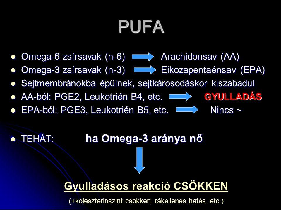PUFA Omega-6 zsírsavak (n-6) Arachidonsav (AA) Omega-6 zsírsavak (n-6) Arachidonsav (AA) Omega-3 zsírsavak (n-3) Eikozapentaénsav (EPA) Omega-3 zsírsavak (n-3) Eikozapentaénsav (EPA) Sejtmembránokba épülnek, sejtkárosodáskor kiszabadul Sejtmembránokba épülnek, sejtkárosodáskor kiszabadul AA-ból: PGE2, Leukotrién B4, etc.