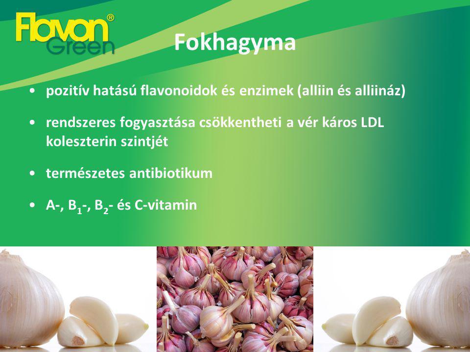 Fokhagyma pozitív hatású flavonoidok és enzimek (alliin és alliináz) rendszeres fogyasztása csökkentheti a vér káros LDL koleszterin szintjét természetes antibiotikum A-, B 1 -, B 2 - és C-vitamin