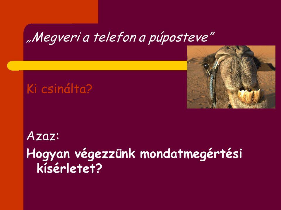 A magyar nyelvi rendszerről I. Esetragok és szórend II. Igekötők III. Anaforaértelmezés