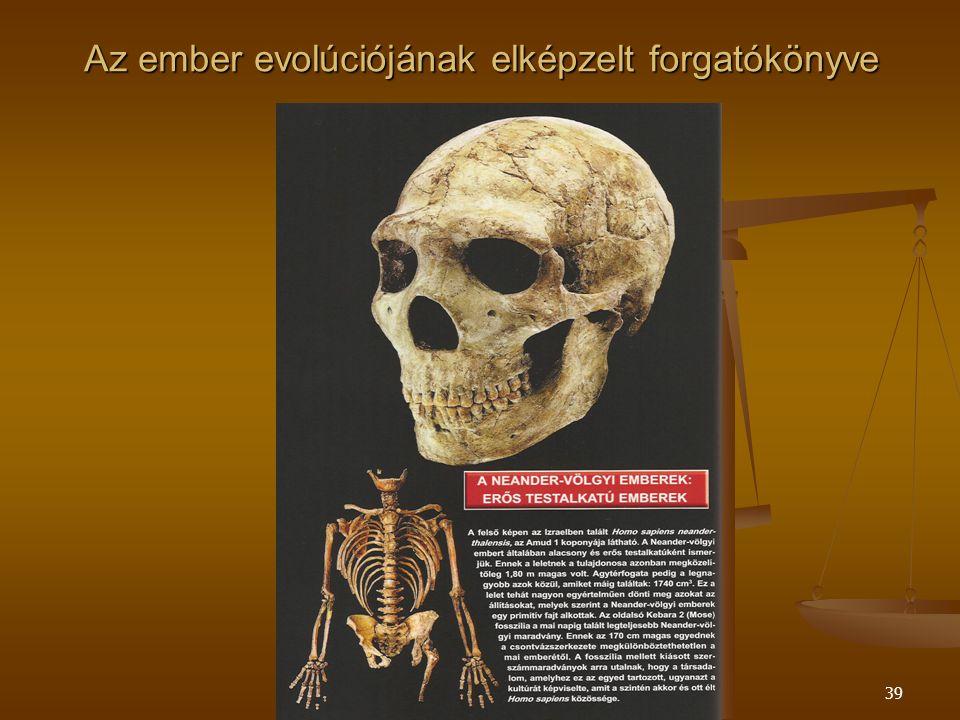 Szent Pál Akadémia39 Az ember evolúciójának elképzelt forgatókönyve
